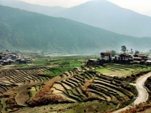 bhutan 009